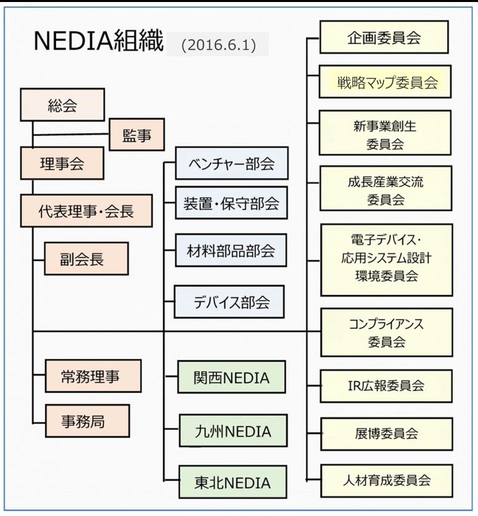 NEDIAorgRev3